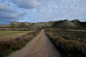 aragon road